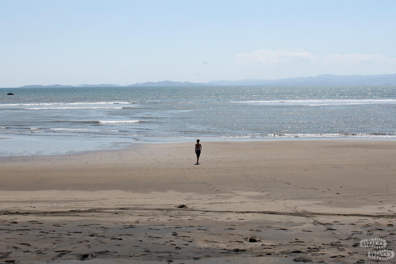 Billy Beach