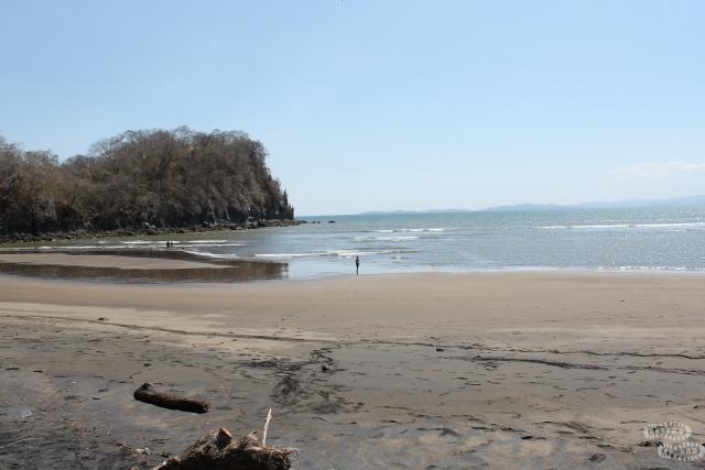 Billy Beach2
