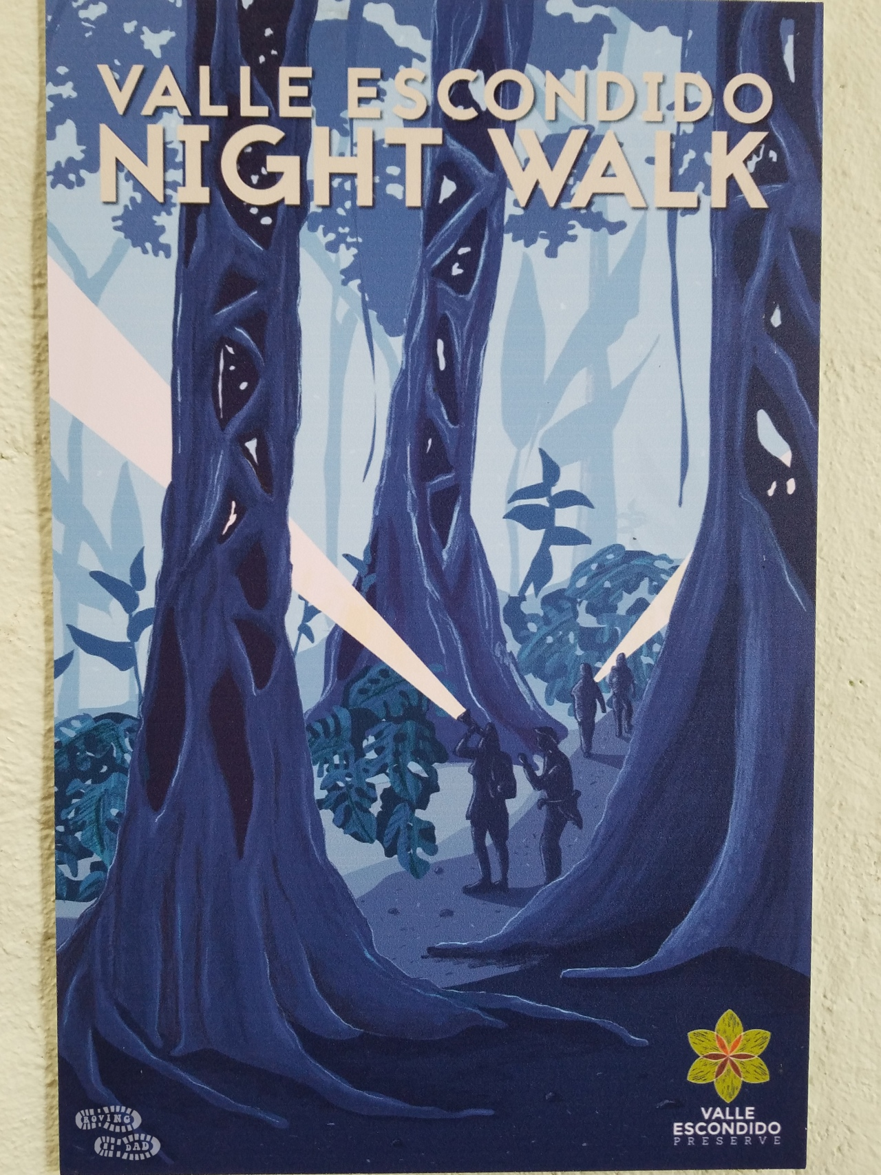 Nightwalk Poster